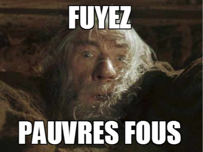 fuyez-pauvre-fou_837x627